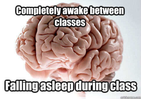 Completely awake between classes Falling asleep during class - Completely awake between classes Falling asleep during class  Scumbag Brain