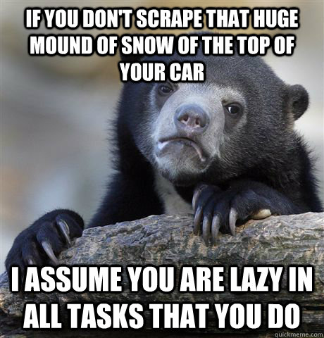 If you don't scrape that huge mound of snow of the top of your car I assume you are lazy in all tasks that you do - If you don't scrape that huge mound of snow of the top of your car I assume you are lazy in all tasks that you do  Confession Bear