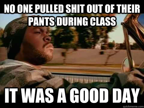 no one pulled shit out of their pants during class IT WAS A GOOD DAY - no one pulled shit out of their pants during class IT WAS A GOOD DAY  ice cube good day