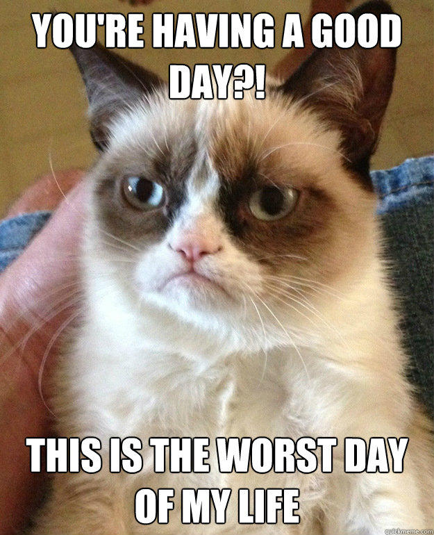 YOU'RE HAVING A GOOD DAY?! THIS IS THE WORST DAY OF MY LIFE  Grumpy Cat