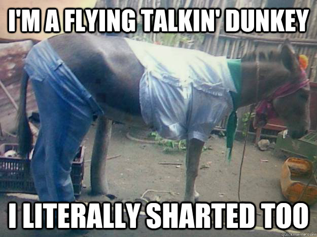 i'm a FLYING TALKIN' DUNKEY I LITERALLY SHARTED TOO - i'm a FLYING TALKIN' DUNKEY I LITERALLY SHARTED TOO  Do these pants