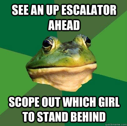 see an up escalator ahead scope out which girl to stand behind  Foul Bachelor Frog