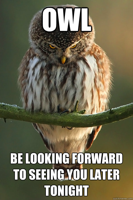 Owl  Be looking forward to seeing you later tonight