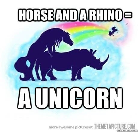 HORSE AND A RHINO = a unicorn - HORSE AND A RHINO = a unicorn  Misc