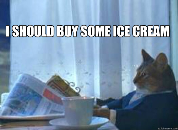 I should buy some ice cream  - I should buy some ice cream   I should buy a boat cat