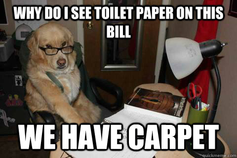 Why do i see toilet paper on this bill We have carpet - Why do i see toilet paper on this bill We have carpet  Financial Advice Dog