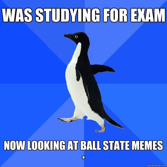 Was studying for exam  Now looking at ball state memes .  Socially Awkward Penguin