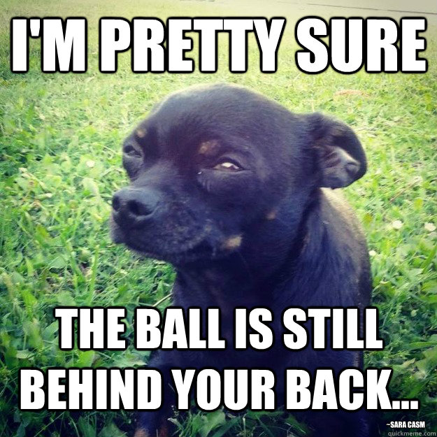I'M PRETTY SURE THE BALL IS STILL BEHIND YOUR BACK... ~sara casm - I'M PRETTY SURE THE BALL IS STILL BEHIND YOUR BACK... ~sara casm  Skeptical Dog