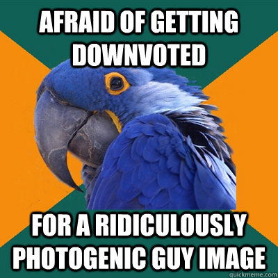 Afraid of getting downvoted For a Ridiculously Photogenic Guy image - Afraid of getting downvoted For a Ridiculously Photogenic Guy image  Paranoid Parrot