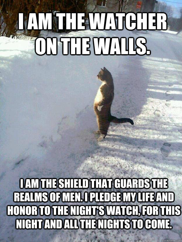 I am the watcher on the walls.  I am the shield that guards the realms of men. I pledge my life and honor to the Night's Watch, for this night and all the nights to come.