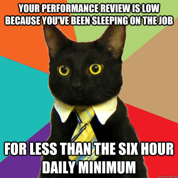 Your performance review is low because you've been sleeping on the job for less than the six hour daily minimum - Your performance review is low because you've been sleeping on the job for less than the six hour daily minimum  Business Cat