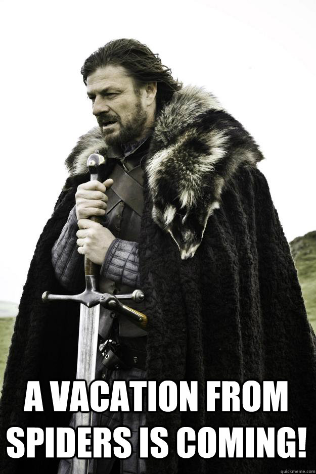 A vacation from spiders is coming! -  A vacation from spiders is coming!  Winter is coming
