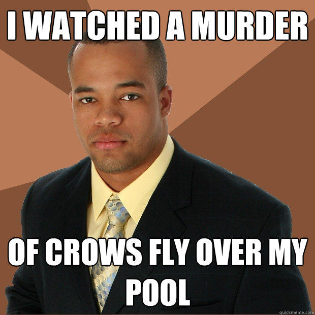I watched a murder of crows fly over my pool - I watched a murder of crows fly over my pool  Successful Black Man