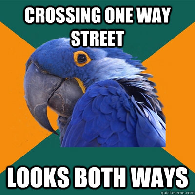 Crossing one way street looks both ways - Crossing one way street looks both ways  Paranoid Parrot