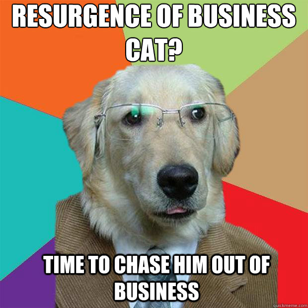Resurgence of Business cat?   time to chase him out of business - Resurgence of Business cat?   time to chase him out of business  Business Dog