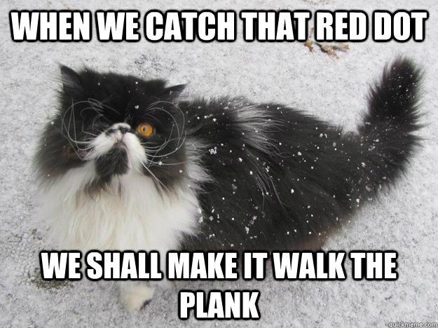 Red Persian Cat Meme