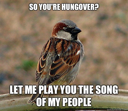 So you're hungover? Let me play you the song of my people