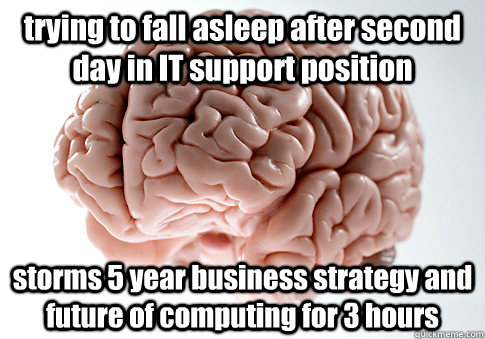 trying to fall asleep after second day in IT support position storms 5 year business strategy and future of computing for 3 hours - trying to fall asleep after second day in IT support position storms 5 year business strategy and future of computing for 3 hours  Scumbag Brain