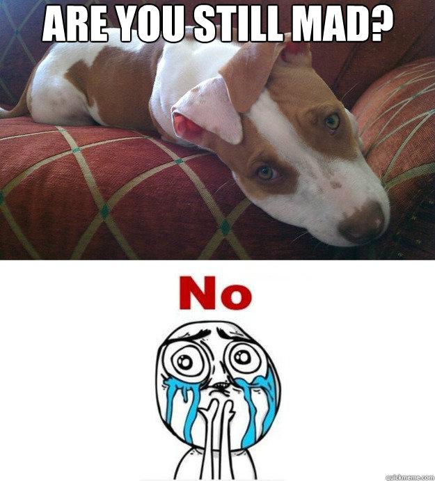 f434f195ec8c378564ee894538b393c86cb2bd03795ccf00acf7d7be19064530 are you still mad? misc quickmeme,Still Mad Meme