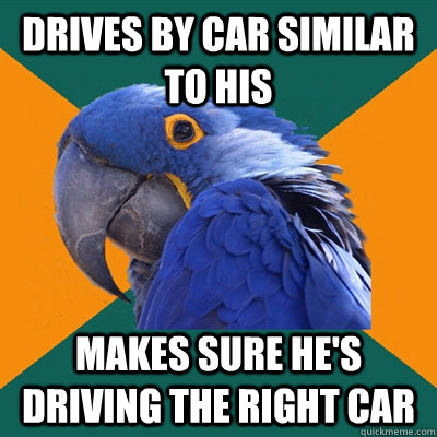 drives by car similar to his makes sure he's driving the right car - drives by car similar to his makes sure he's driving the right car  Paranoid Parrot
