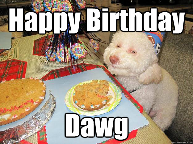 Happy Birthday Dawg  Stoned Birthday Dog