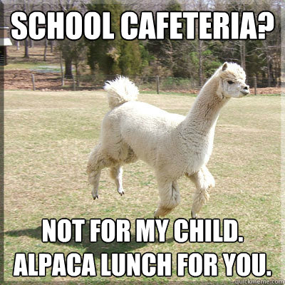 School cafeteria? Not for my child. Alpaca lunch for you.