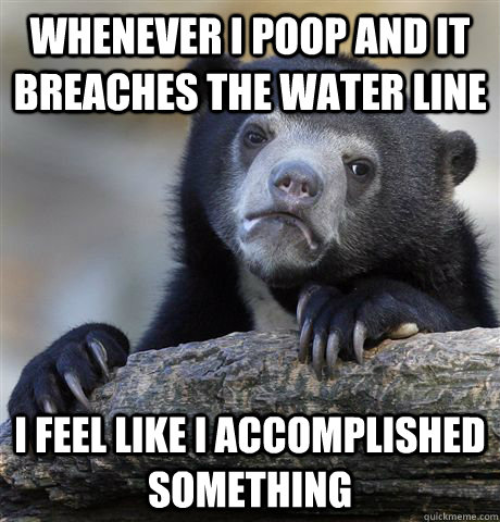 whenever i poop and it breaches the water line i feel like i accomplished something - whenever i poop and it breaches the water line i feel like i accomplished something  Confession Bear