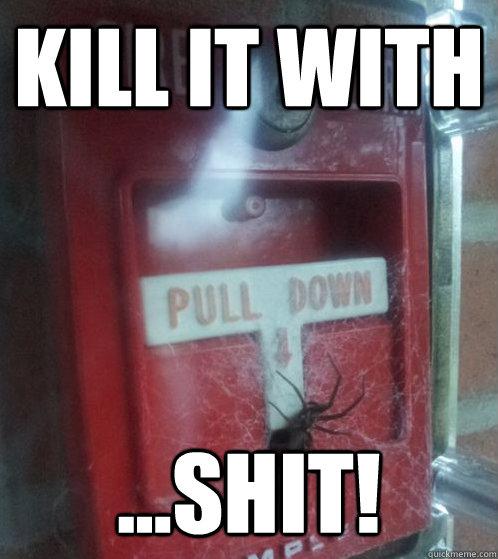 Kill It With Shit Fire Spider Quickmeme