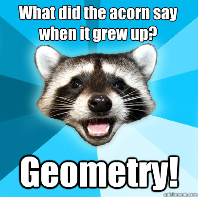 What did the acorn say when it grew up? Geometry! - What did the acorn say when it grew up? Geometry!  Lame Pun Coon