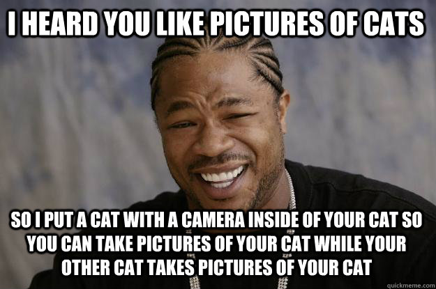 I heard you like pictures of cats So i put a cat with a camera inside of your cat so you can take pictures of your cat while your other cat takes pictures of your cat  Xzibit meme