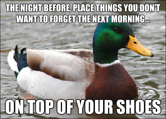 The night before, Place things you don't want to forget the next morning... on top of your shoes - The night before, Place things you don't want to forget the next morning... on top of your shoes  Actual Advice Mallard