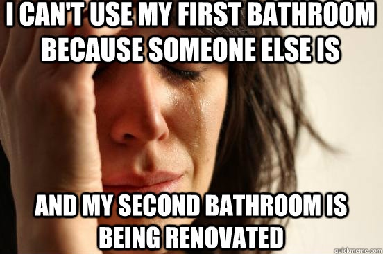 I can't use my first bathroom because someone else is and my second bathroom is being renovated - I can't use my first bathroom because someone else is and my second bathroom is being renovated  First World Problems