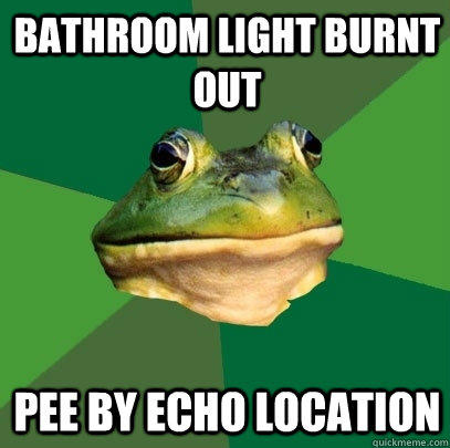 Bathroom light burnt out pee by echo location  - Bathroom light burnt out pee by echo location   Foul Bachelor Frog