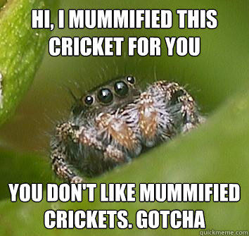 hi, i mummified this cricket for you you don't like mummified crickets. Gotcha - hi, i mummified this cricket for you you don't like mummified crickets. Gotcha  Misunderstood Spider