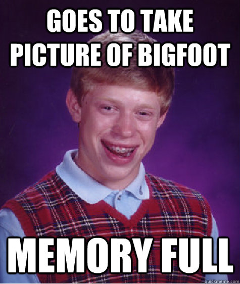Goes to take picture of bigfoot Memory Full