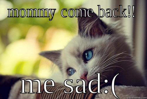 MOMMY COME BACK!! ME SAD:( First World Problems Cat