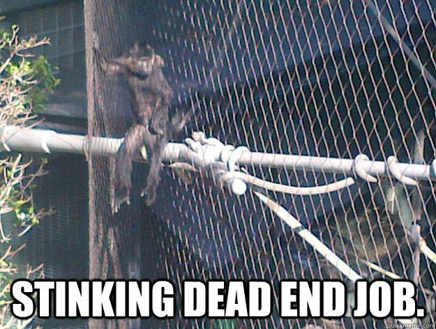 Stinking dead end job. -  Stinking dead end job.  Reflective Monkey
