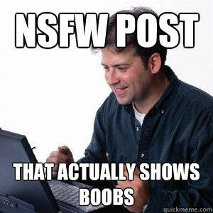 NSFW POST that actually shows boobs  Lonely Computer Guy