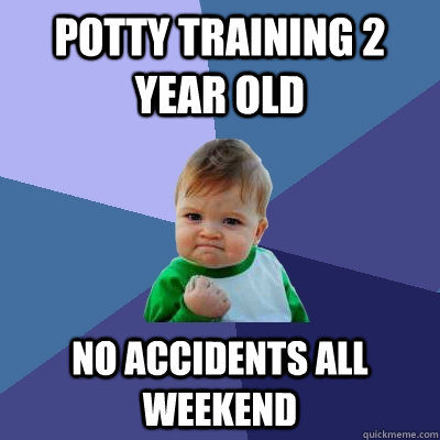Potty training 2 year old no accidents all weekend - Potty training 2 year old no accidents all weekend  Success Kid