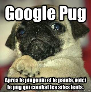 Google Pug Apres le pingouin et le panda, voici le pug qui combat les sites lents.