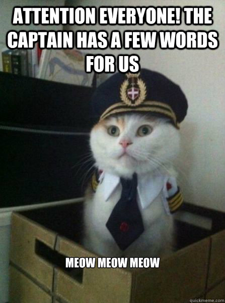 attention everyone! the captain has a few words for us meow meow meow