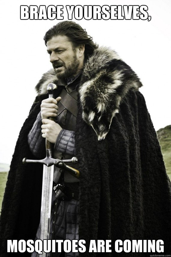 Brace yourselves, Mosquitoes are coming - Brace yourselves, Mosquitoes are coming  Brace yourself