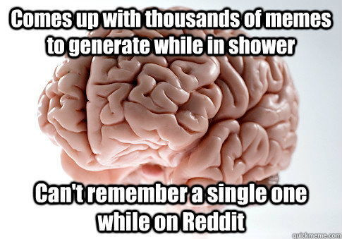 Comes up with thousands of memes to generate while in shower Can't remember a single one while on Reddit - Comes up with thousands of memes to generate while in shower Can't remember a single one while on Reddit  Scumbag Brain