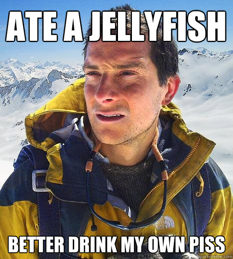 ate a jellyfish better drink my own piss  Bear Grylls