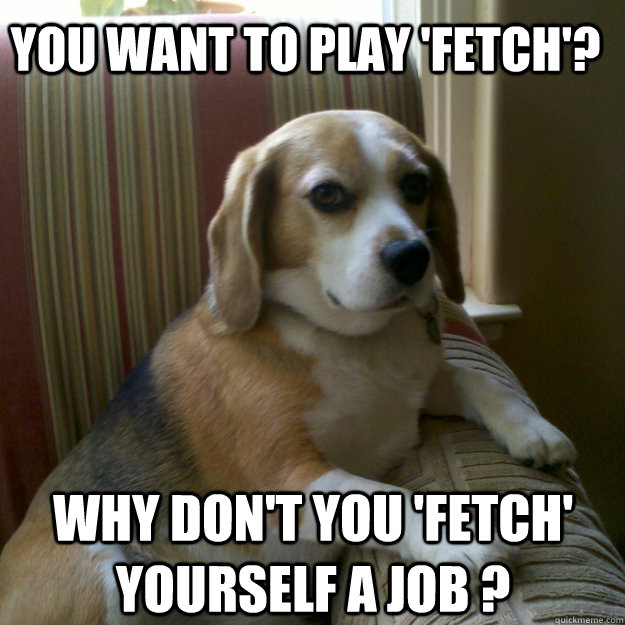 You want to play 'fetch'? Why don't you 'fetch' yourself a job ?
