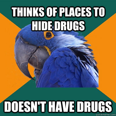 THINKS OF PLACES TO HIDE DRUGS DOESN'T HAVE DRUGS - THINKS OF PLACES TO HIDE DRUGS DOESN'T HAVE DRUGS  Paranoid Parrot