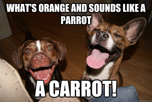What's orange and sounds like a parrot A carrot!  Clean Joke Puppies