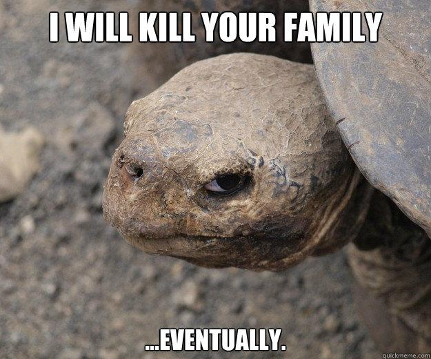 I WILL KILL YOUR FAMILY ...EVENTUALLY.  Insanity Tortoise