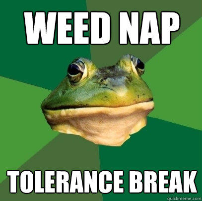 weed nap Tolerance break - weed nap Tolerance break  Foul Bachelor Frog