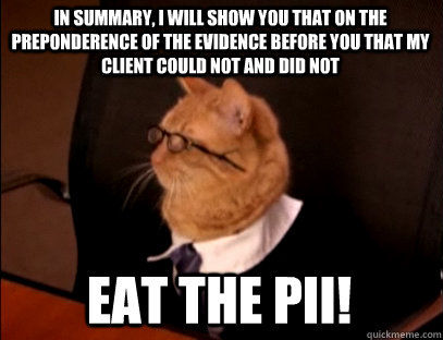 In summary, I WILL SHOW YOU THAT ON THE PREPONDERENCE OF THE EVIDENCE BEFORE YOU THAT my client could not AND DID NOT EAT THE PII!